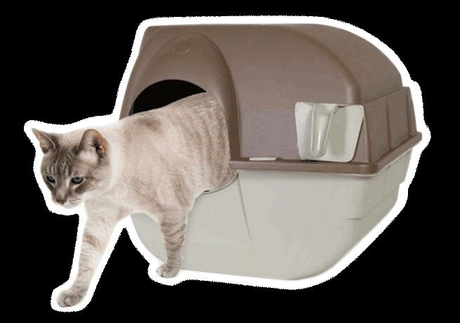 migliore-lettiera-autopulente-per-gatto