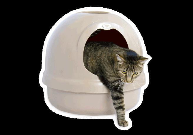 migliore-lettiera-chiusa-per-gatto