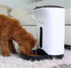 dispenser-cibo-cani-vacanze-fuori-casa